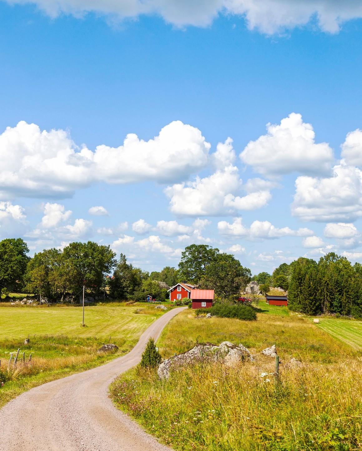 Röd gård på landet, sommar