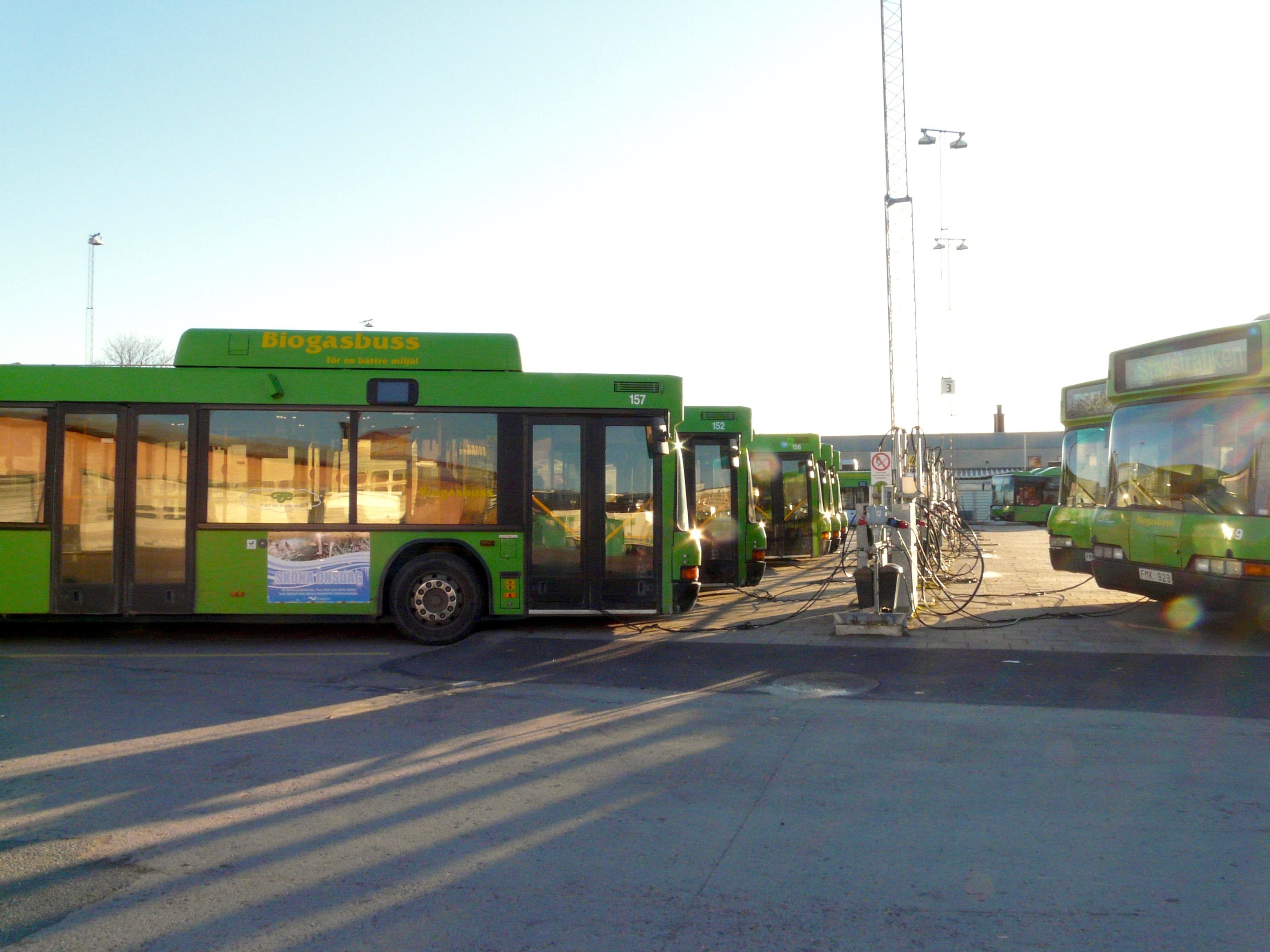 Biogasbussar