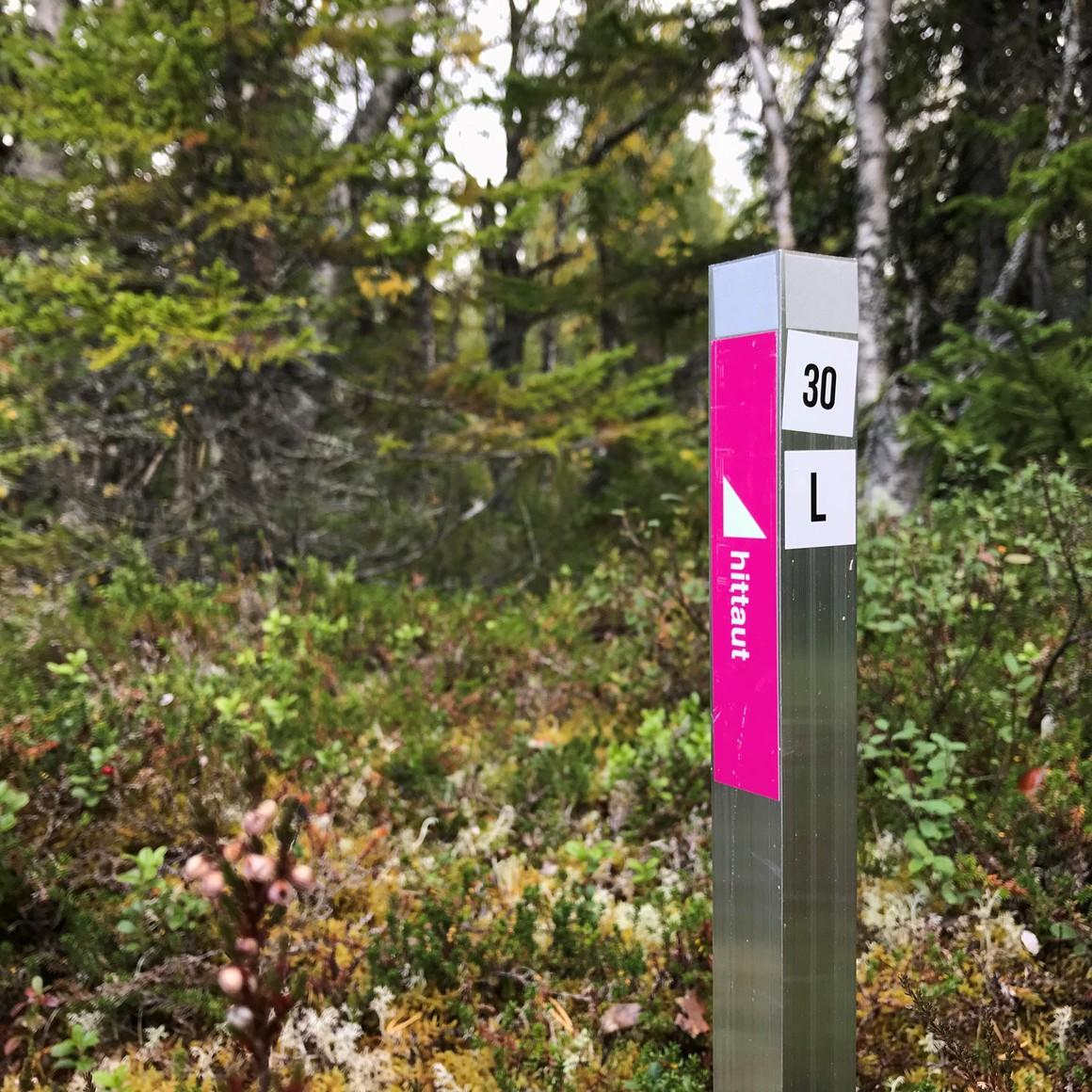 Checkpointsstolpe i skog med höstfärger