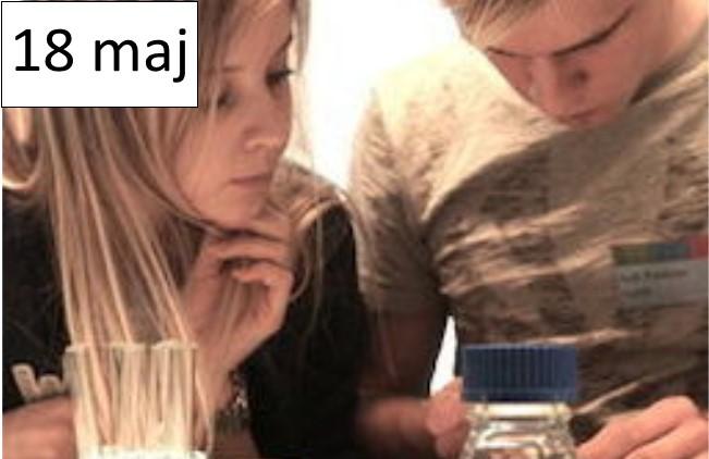 18 maj - EUSO, en tävling för elever i naturkunskap