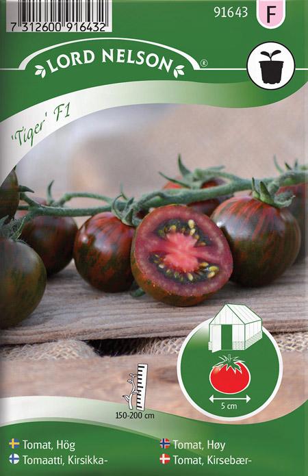 0907031 SOLANUM lycopersicum Tomaatti 'Tiger' F1