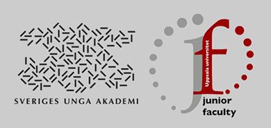 Sveriges unga akademi och Junior Faculty