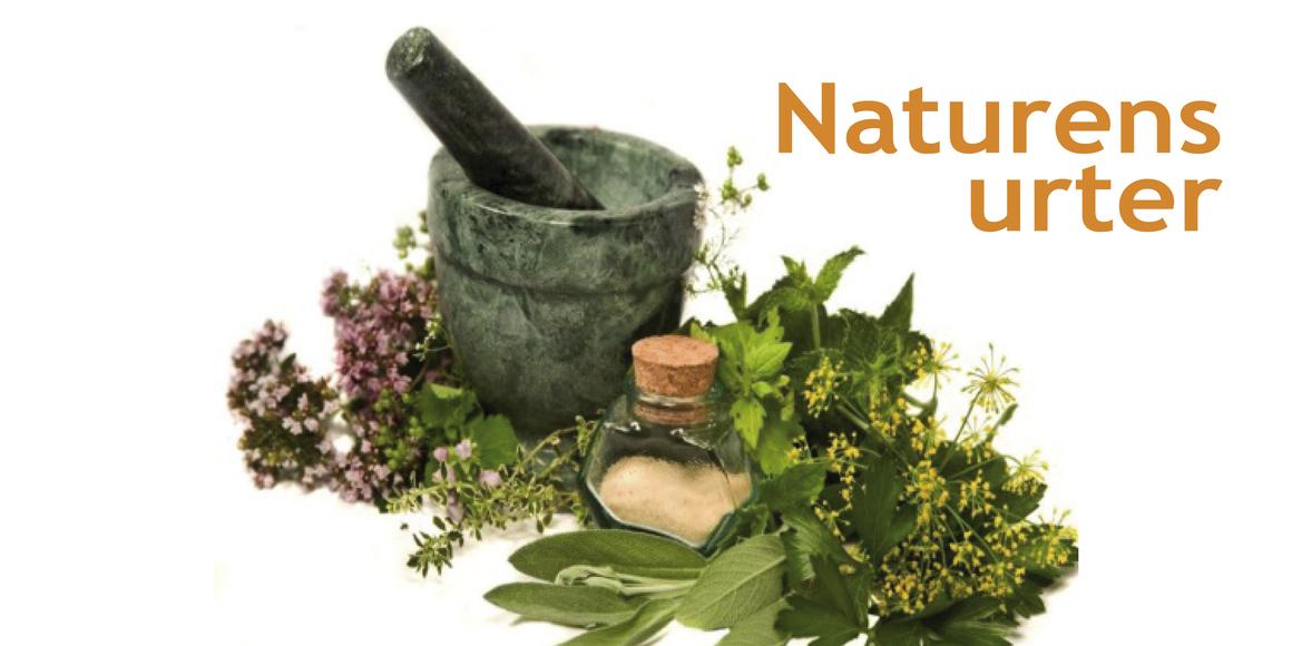 Lær om naturens urter