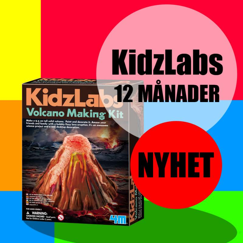 KidzLabs Experiment