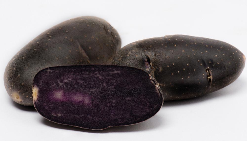 1200004 Siemenperuna Violet Queen 1 kg