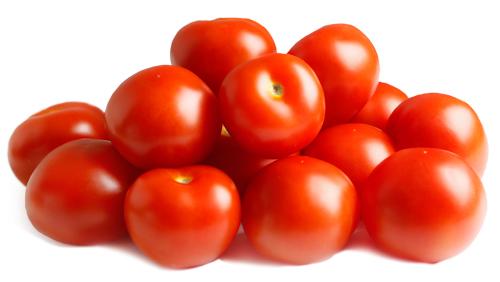 1604001 SOLANUM lycopersicum Tomaatti Encore