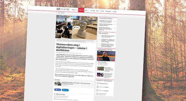 Skärmbild från SVTs nyhet