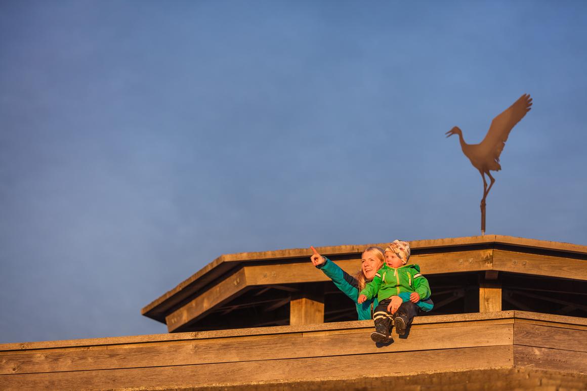 Vuxen och barn på fågeltornet vid Fågeludden, Hornborgasjön