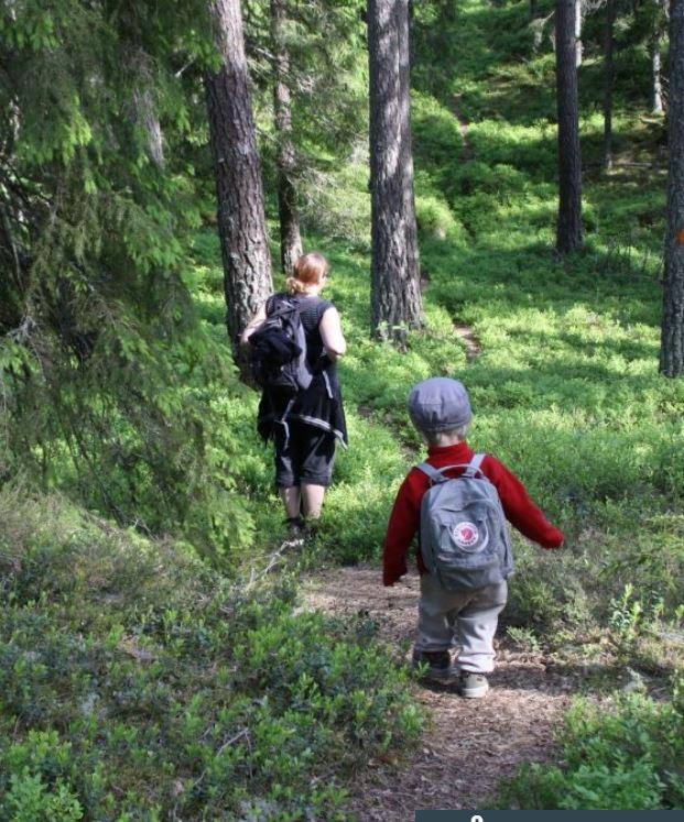 Vandring i skog. Fotograf: Åsa Wistrand