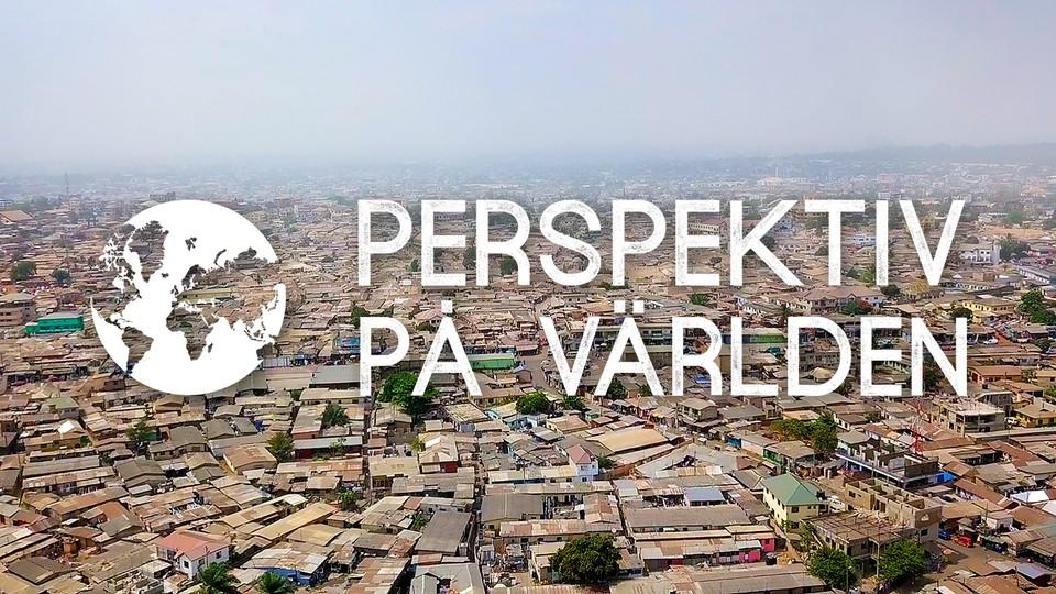Perspektiv på världen
