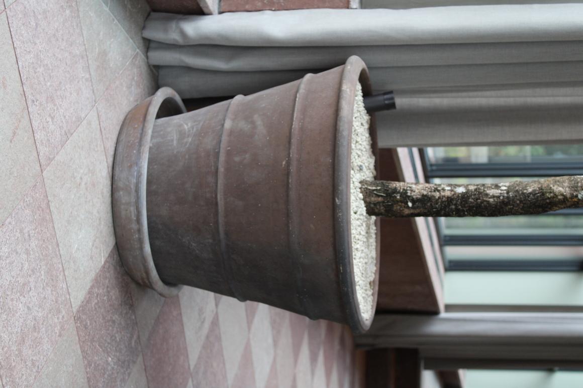 stor kruka Orangeri Lavaterrakotta frosttålig Cadabra