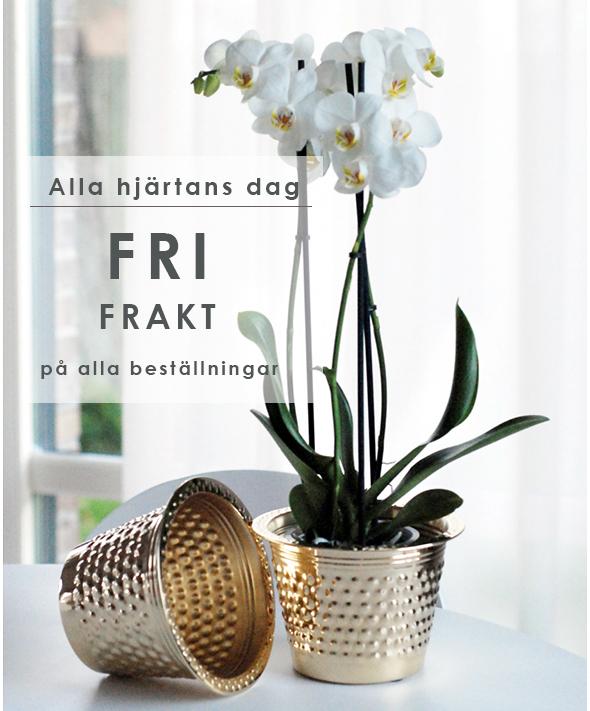 Fri Frakt på allt hela  Alla Hjärtans Dag!