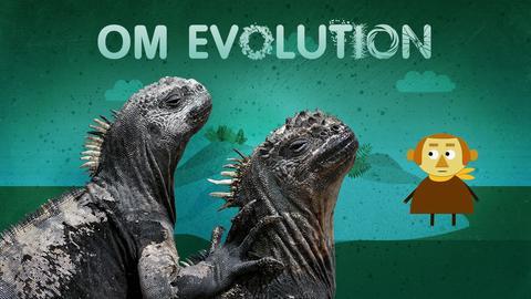 Om evolution