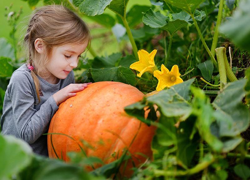 Odlingsredskap för barn - NYHET!